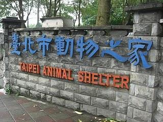 台北市流浪動物之家入口。陳郁雯/攝影